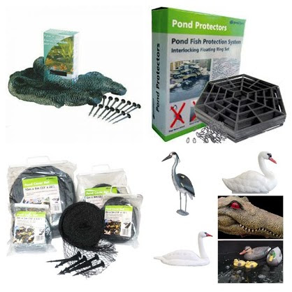 Pond Protection